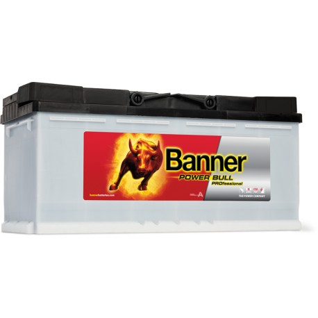 Banner  Power Bull PROFESSIONAL 12V  100Ah 800A